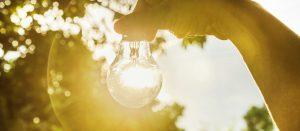 Umweltmanagement mit der ISO 14001