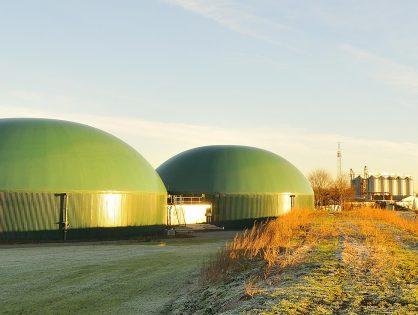 BAFA Förderung für Biogasanlagen