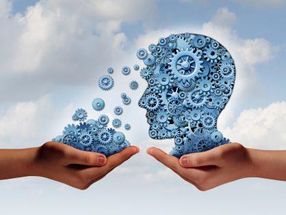 Qualitätsmanagement - Mehr Wettbewerbsfähigkeit für kleine und mittlere Unternehmen mit der ISO 9001